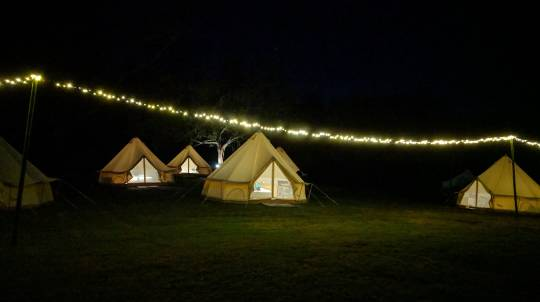 Shoalhaven River Glamping with Canoe Hire - 1 Night - For 2