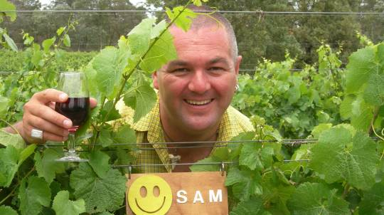 Adopt Your Own Grape Vine Experience