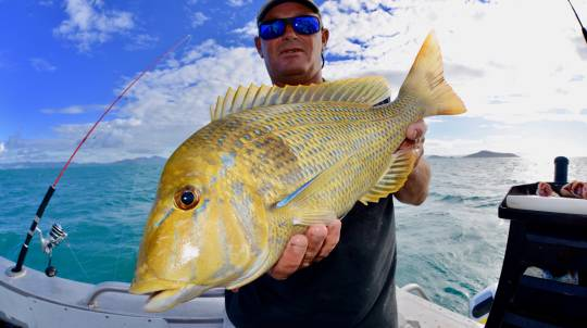 Full Day Fishing Charter with Transfers and Lunch