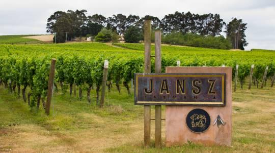 Tamar Valley Wine Tasting Private Tour
