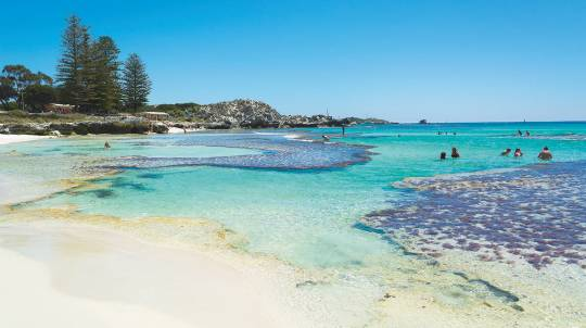 Rottnest Island Return Ferry Ticket