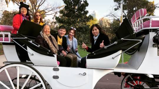 Melbourne Horse Drawn Carriage Tour - 40 Minutes