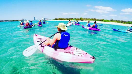 Kayaking with Dolphins and Snorkelling Tour
