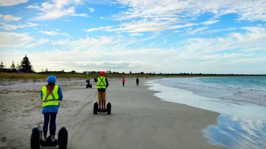 Albany Summit to Sea Segway Tour - 90 Minutes