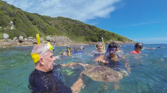 Marine Discovery Cruise with Snorkelling