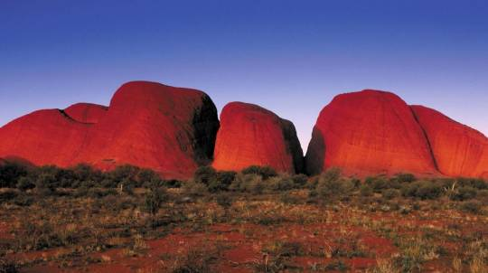 Uluru Adventure with Lunch and Sunset Dinner - Full Day Tour