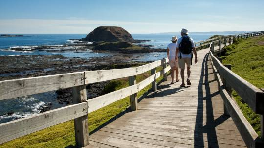 Phillip Island Tour of Penguin Parade, Seal Rock and More