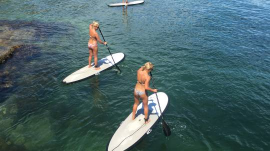Stand Up Paddle Board on Sydney Harbour