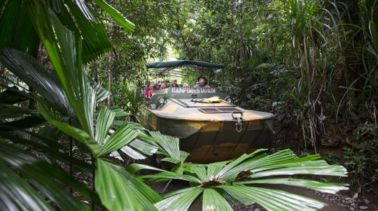 Rainforest, Wildlife and Butterfly Sanctuary Tour