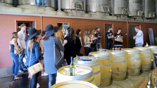 Full Day Margaret River Wine Tour with Tastings and Lunch