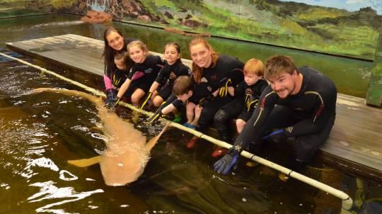Aquarium Tour and Shark Encounter