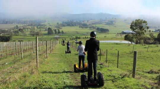 Yarra Valley Segway Tour with Lunch and Wine - For 2