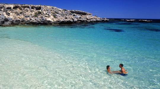 Rottnest Island - Ferry and Bike Hire - Perth