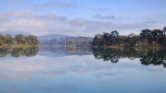 Leven River Cruise and Bush Tour with 3 Course Meal - Child