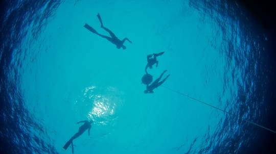 2 Day Introductory Freediving Course