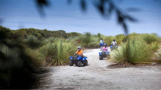 Sunset Kangaroo Quad Bike Safari