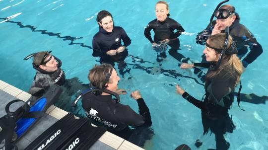 PADI Basic Freediver Course - 5 Hours