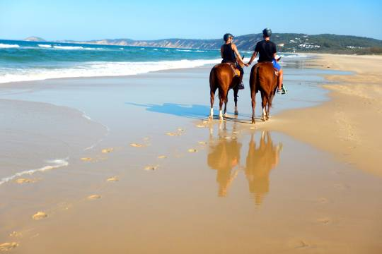 Customer review: Rainbow Beach horse ride