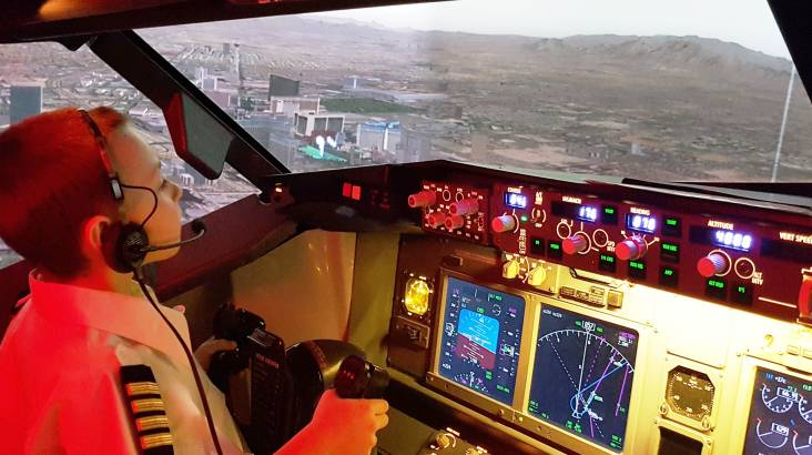 Boeing 737-800 Jet Simulator Experience - 30 Minutes
