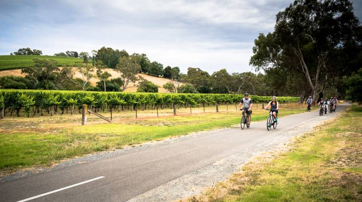 RedBalloon 5 Day Barossa Valley Cycling Tour with Accomodation and More