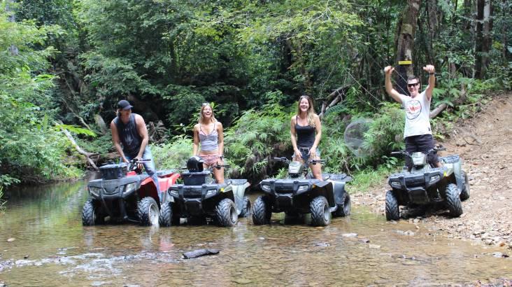 Wildlife and Rainforest Quad Bike Tour - Half Day