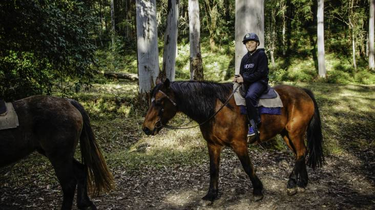 RedBalloon Horse Riding Guided Trail - 2 Hours