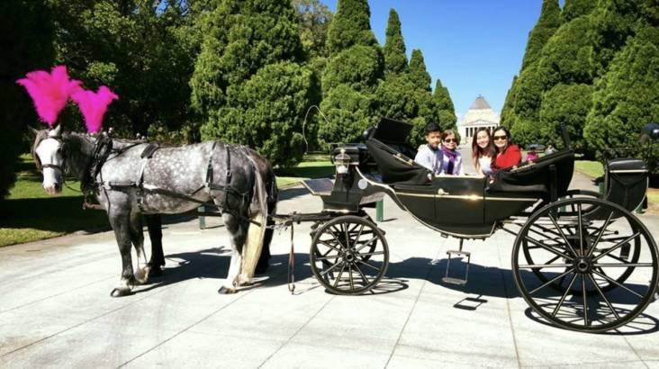 Melbourne Horse Drawn Carriage Tour - 1 Hour