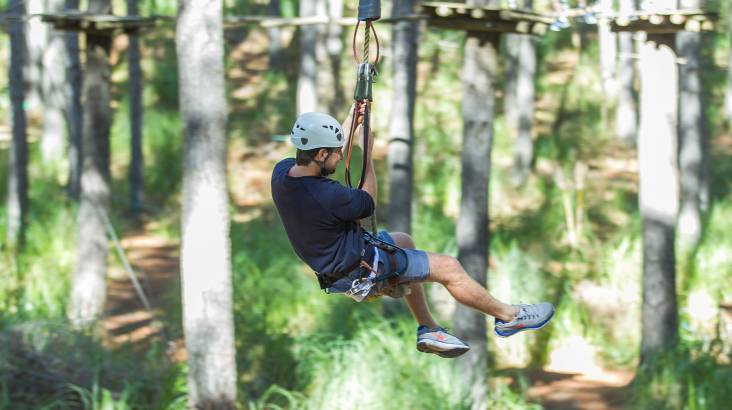 RedBalloon High Ropes Adventure - Branching Out