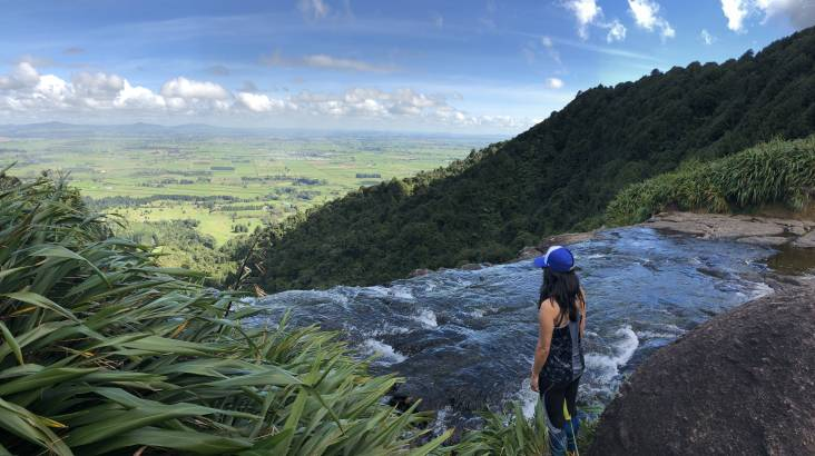 RedBalloon Waikato Hike with Artisan Food and Wine - Full Day