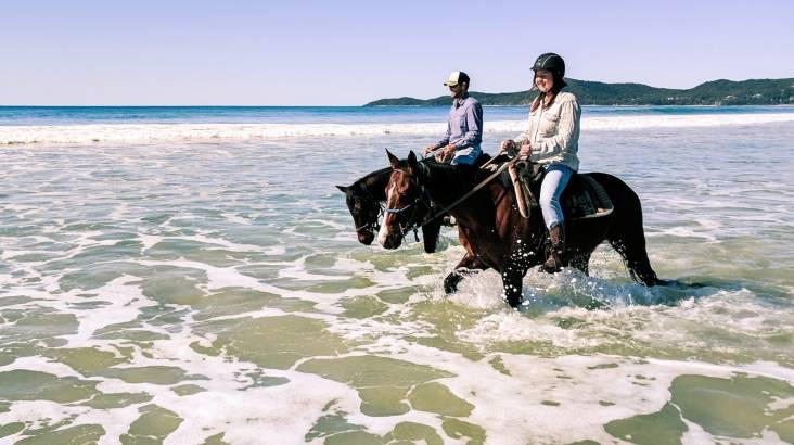 Noosa National Park Intermediate Horse Trail Ride