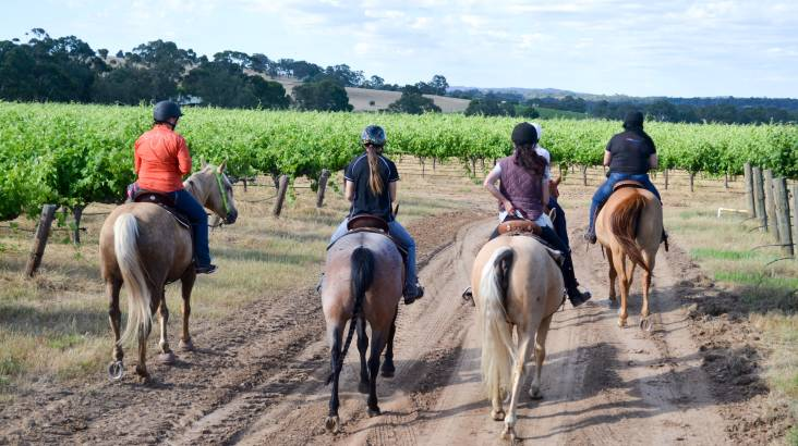 RedBalloon Barossa Valley Horse Riding Tour with Cheese Plate - For 2