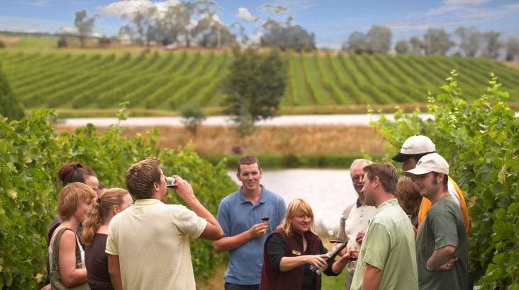 RedBalloon Wine Tasting and Lunch in the Yarra Valley - For 2