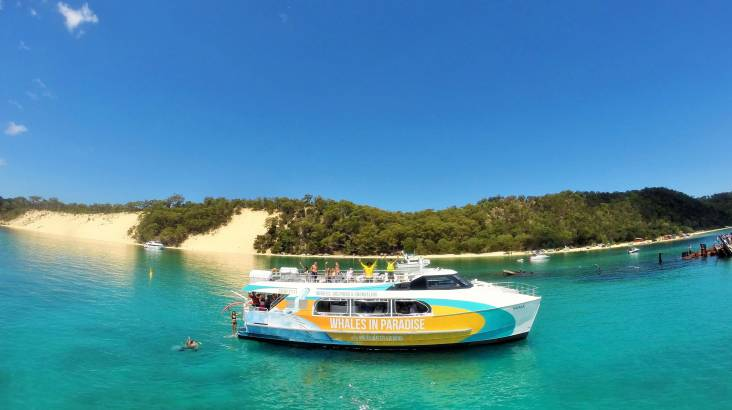 Dolphin Cruise to the Tangalooma Wrecks - For 2
