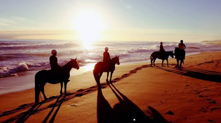 Beach Horseback Tour at Sunrise and Hot Springs Bathe