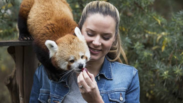 Behind the Scenes at the National Zoo - Weekend