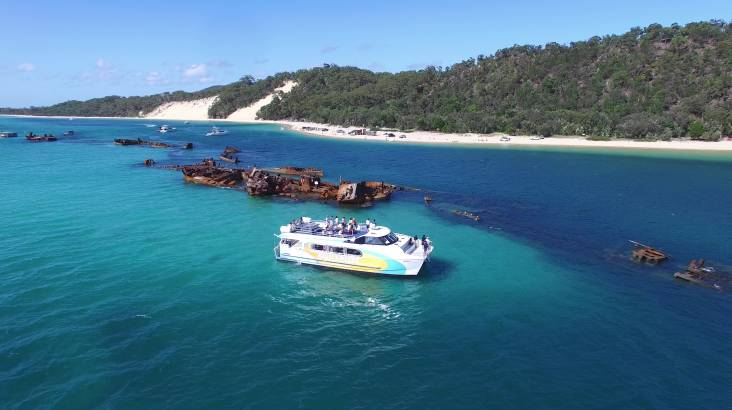 RedBalloon Dolphin Cruise to the Tangalooma Wrecks with Transfers