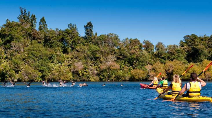 RedBalloon Scenic Guided Lake McLaren Kayak Tour - 3 Hours - For 2