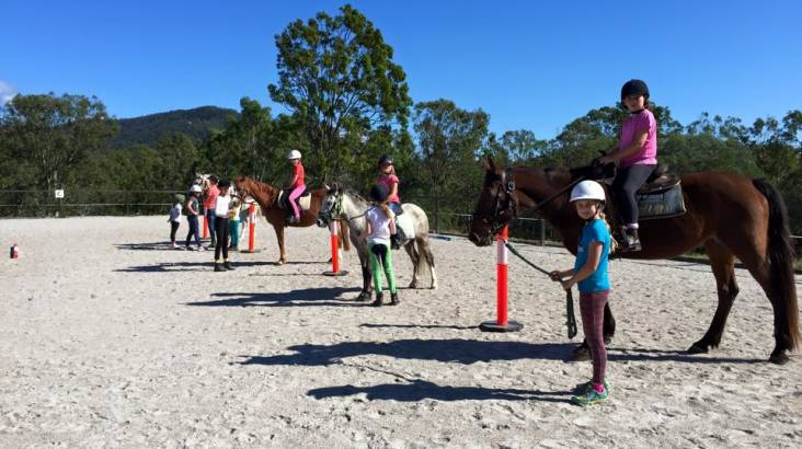 Horse Riding and Animal Tour at Trevena Glen Farm