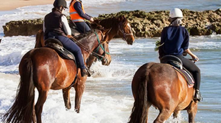 Early Riser Beach Horse Ride
