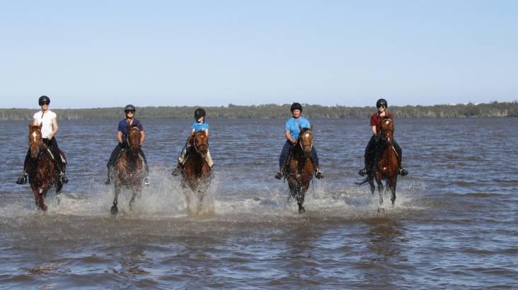 Noosa National Park Advanced Horse Trail Ride