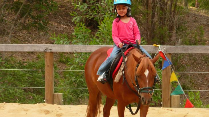 Horse Riding Lesson - 60 Minutes