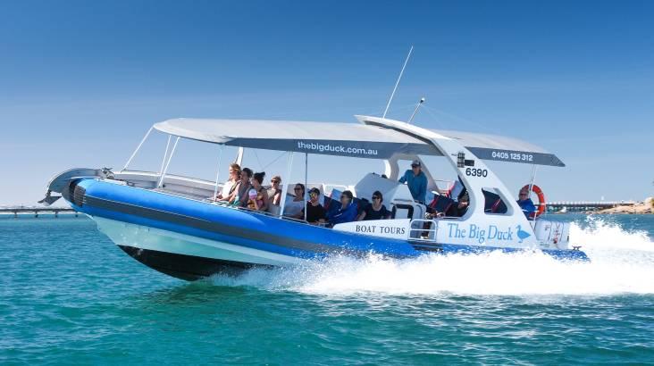 Seal Island Adventure Cruise - 45 Minutes