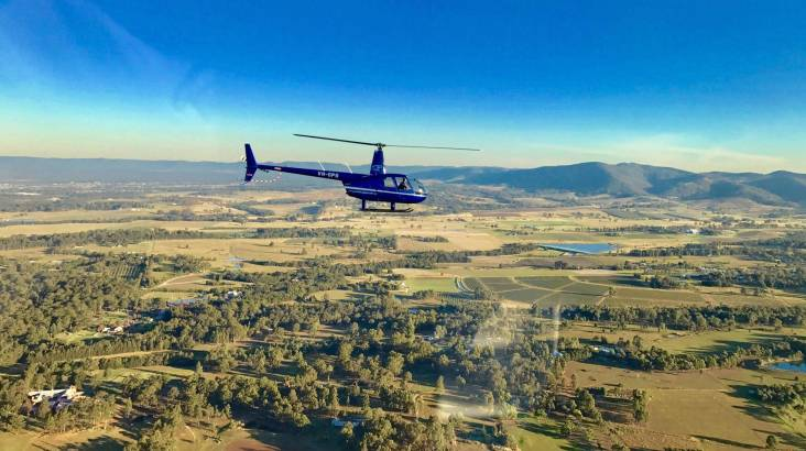 Hunter Valley Helicopter Flight with Tastings and Lunch Stop