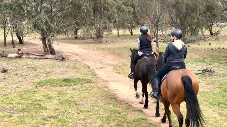 Beginner to Intermediate Horse Riding Tour - 2 Hours