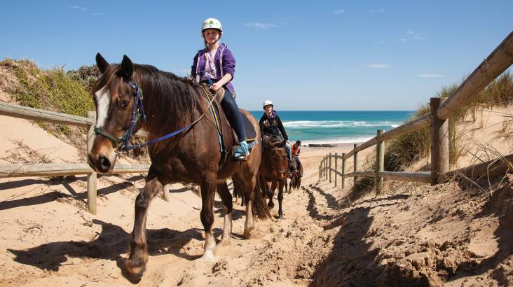 Relaxing Bush Trail Horse Ride - Family Adventure