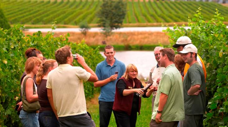 Yarra Valley Wine Tour with Lunch and 6 Bottle Wine Pack