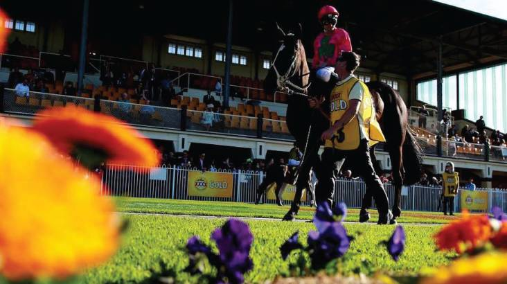 RedBalloon Race Day Package with Transfers and Accomodation - For 2