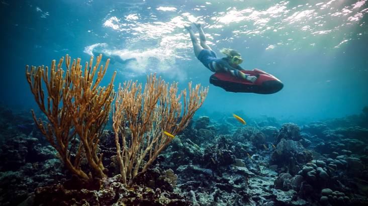 Rottnest Island Seabob Snorkel Tour