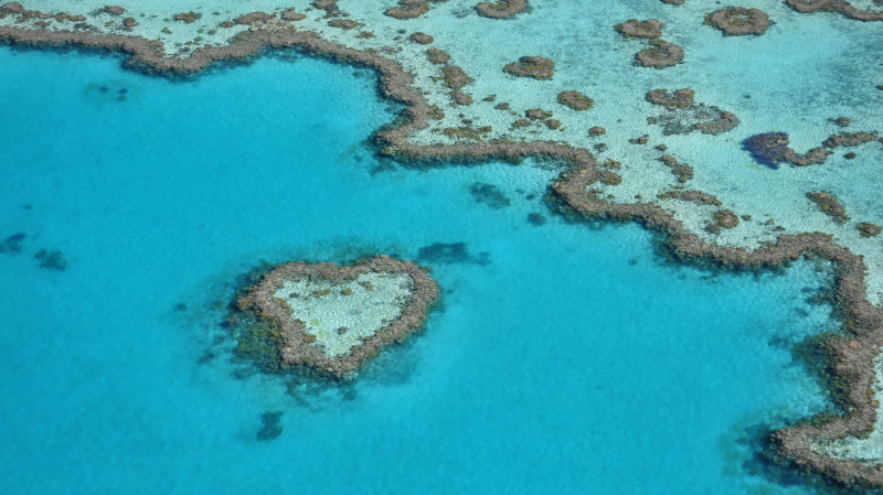 RedBalloon Great Barrier Reef and Whitsunday Scenic Flight - 60 Minutes