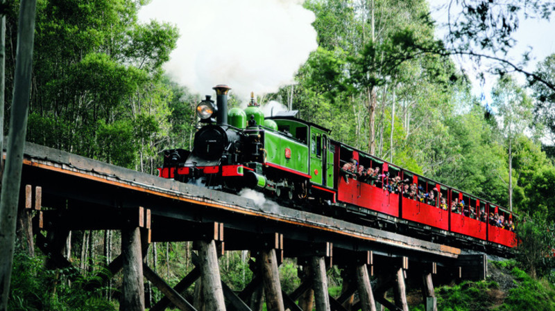 RedBalloon Puffing Billy Stream Train Tour with Winery Lunch - Adult